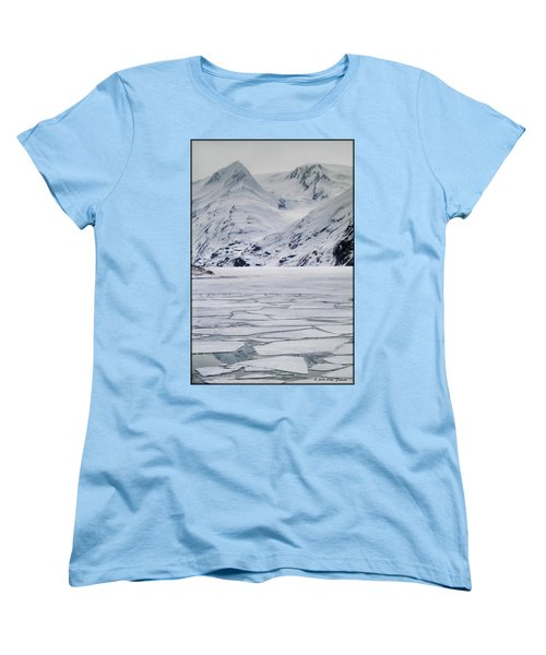 Portage Lake Women's T-Shirt (Standard Cut)