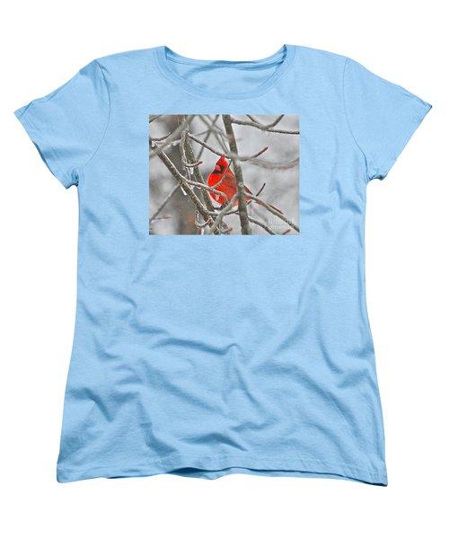 Red Cardinal Northern Bird Women's T-Shirt (Standard Cut)