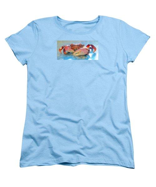 Redrock Women's T-Shirt (Standard Cut) by Adria Trail