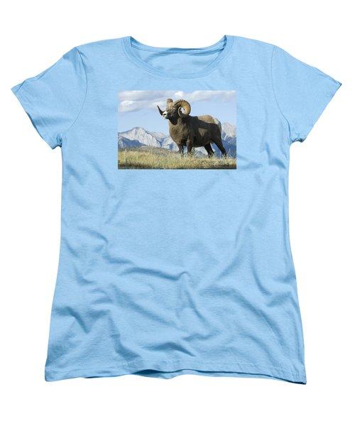 Rocky Mountain Big Horn Sheep Women's T-Shirt (Standard Cut) by Bob Christopher