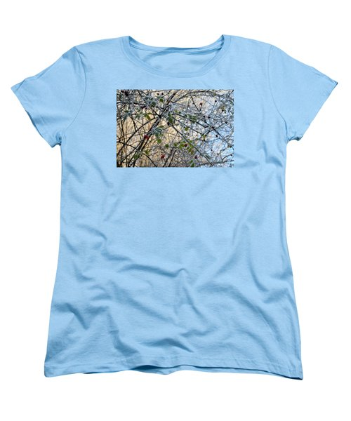 Women's T-Shirt (Standard Cut) featuring the painting Rosa Canina  by Felicia Tica