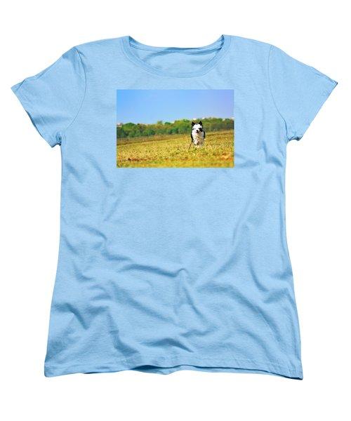 Running Dog Women's T-Shirt (Standard Cut) by Daniel Precht