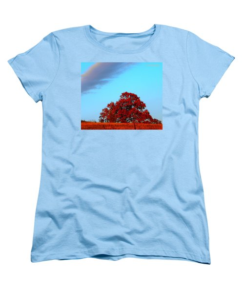 Rural Route Women's T-Shirt (Standard Cut) by Chris Berry