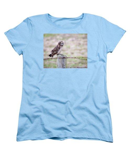 Short Eared Owl Boundary Bay Women's T-Shirt (Standard Cut) by Chris Dutton