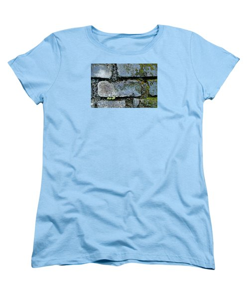 Skc 0301 Tiny Twin Leaves Women's T-Shirt (Standard Cut) by Sunil Kapadia