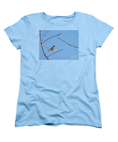 Sky Blue Beauty Women's T-Shirt (Standard Cut) by Meghan at FireBonnet Art