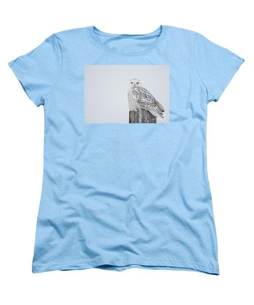 Snowy Owl Perfection Women's T-Shirt (Standard Cut) by Cheryl Baxter