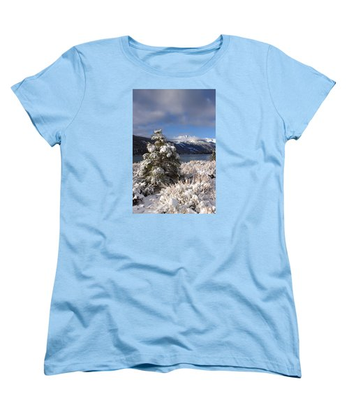 Snowy Pine  Women's T-Shirt (Standard Cut) by Duncan Selby