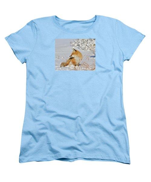 Women's T-Shirt (Standard Cut) featuring the photograph Soaking Up The Sun by Sami Martin