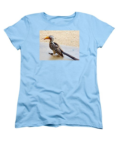 Southern Yellow-billed Hornbill In Kruger National Park-south Africa Women's T-Shirt (Standard Cut) by Ruth Hager