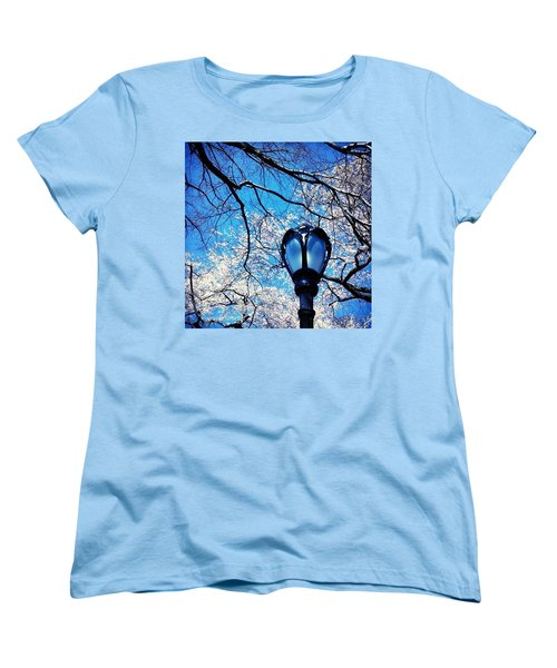 Spring In Central Park New York Women's T-Shirt (Standard Cut) by Anna Porter