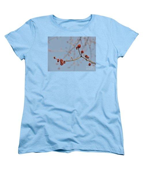 Spring Promise Women's T-Shirt (Standard Cut) by Jola Martysz