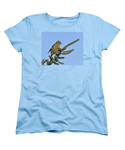 Spruce Cone Feeder Women's T-Shirt (Standard Cut) by Tony Beck