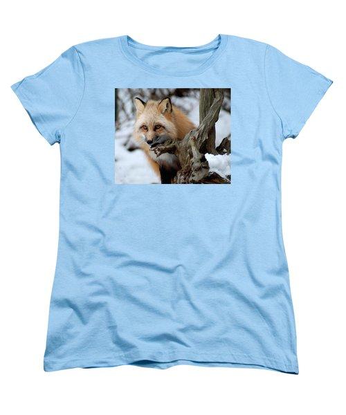 Stunning Sierra Women's T-Shirt (Standard Cut) by Richard Bryce and Family
