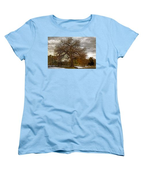 The Welcome Tree Women's T-Shirt (Standard Cut) by Jerry Gammon