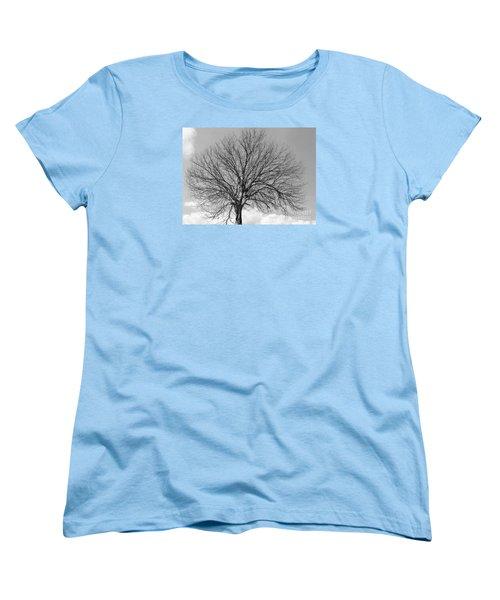 Tropic Winter Women's T-Shirt (Standard Cut)