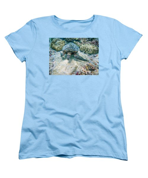 Swimming Turtle Women's T-Shirt (Standard Cut) by Denise Bird