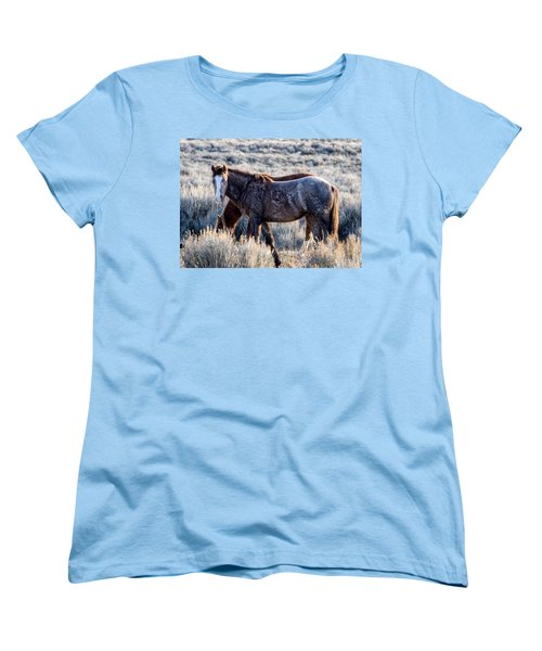 Velvet - Young Colt In Sand Wash Basin Women's T-Shirt (Standard Cut) by Nadja Rider