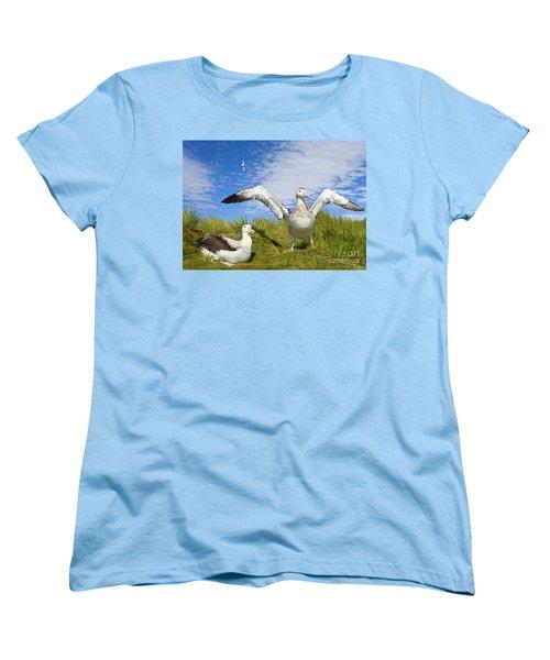 Wandering Albatross Courting  Women's T-Shirt (Standard Cut) by Yva Momatiuk John Eastcott