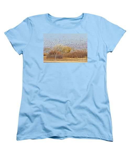 Women's T-Shirt (Standard Cut) featuring the photograph Watching Over The Flock by Bryan Keil