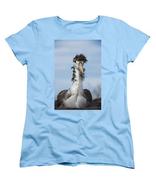 Waved Albatross Molting Juvenile Women's T-Shirt (Standard Cut) by Pete Oxford