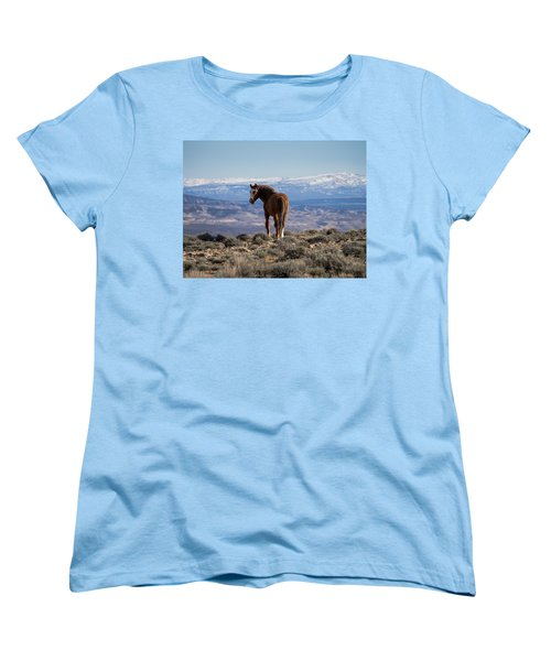Wild Stallion Of Sand Wash Basin Women's T-Shirt (Standard Cut) by Nadja Rider