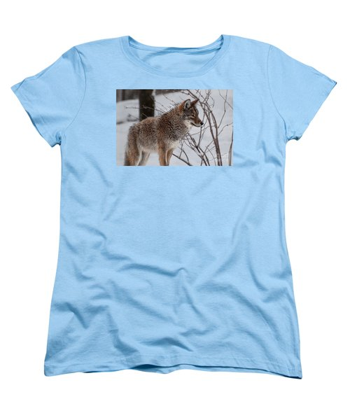 Winter Coyote Women's T-Shirt (Standard Cut)