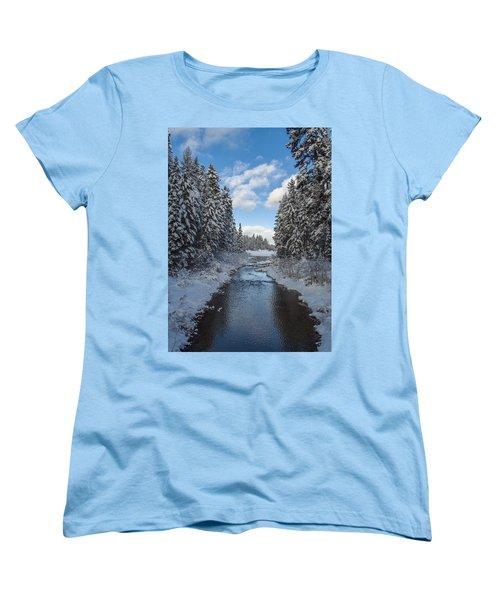 Winter Creek Women's T-Shirt (Standard Cut) by Fran Riley