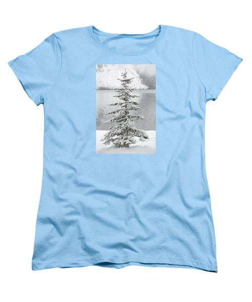 Winter Decor Women's T-Shirt (Standard Cut) by Diane Bohna