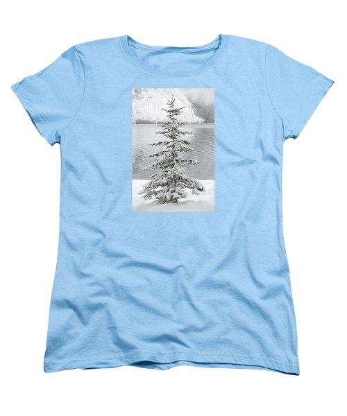 Winter Decor Women's T-Shirt (Standard Cut)