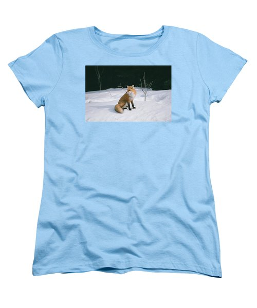 Winter Fox Women's T-Shirt (Standard Cut) by David Porteus