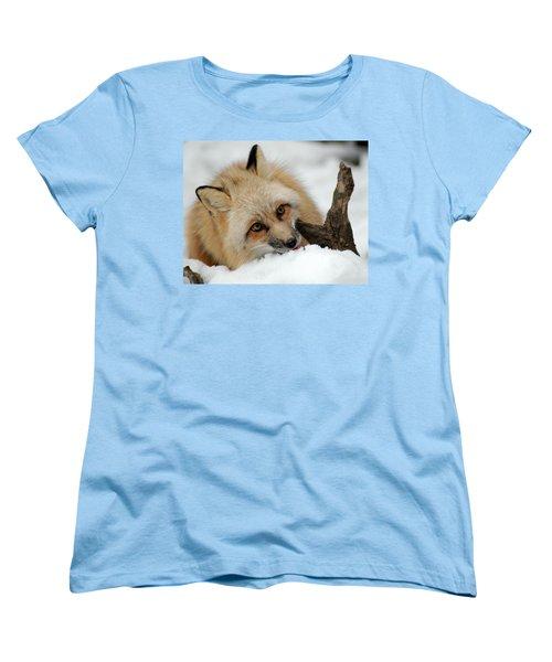 Winter Fox 2 Women's T-Shirt (Standard Cut) by Richard Bryce and Family
