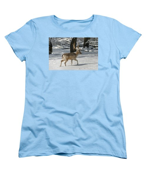Winter Walk Women's T-Shirt (Standard Cut) by Living Color Photography Lorraine Lynch