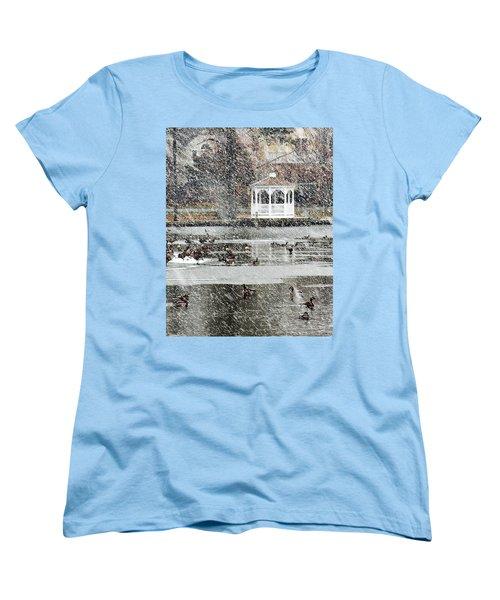 Wintering Geese On Silver Lake Women's T-Shirt (Standard Cut)
