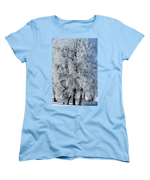 Iced Women's T-Shirt (Standard Cut) by Colleen Coccia
