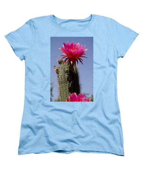 Pink Cactus Flower Women's T-Shirt (Standard Cut) by Jim and Emily Bush