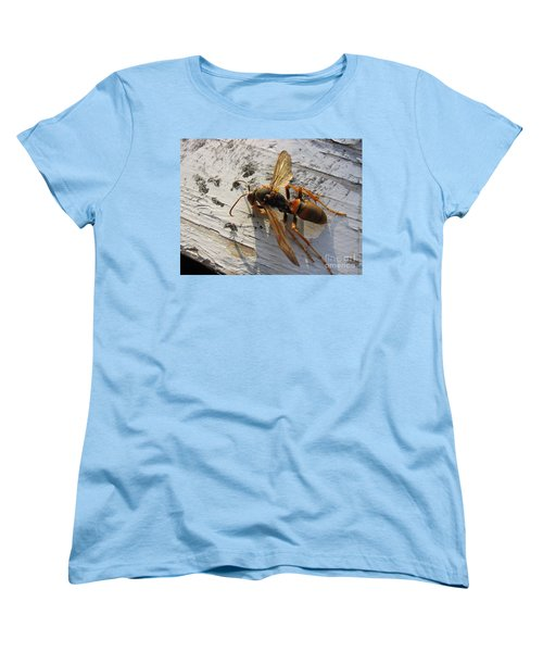 Apache Red Wasp Women's T-Shirt (Standard Cut) by Mark Robbins