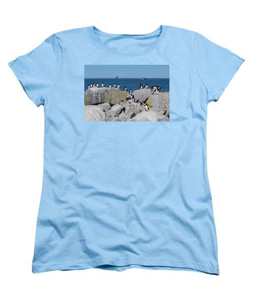 Auk Island Women's T-Shirt (Standard Cut) by Bruce J Robinson