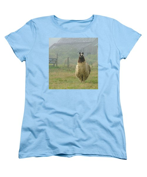 Women's T-Shirt (Standard Cut) featuring the photograph Coast Llama by Wendy McKennon