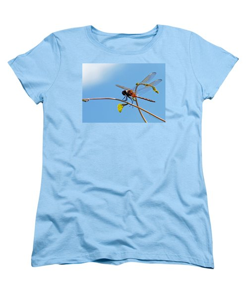 Dragonfly On A Vine Women's T-Shirt (Standard Cut) by Kay Lovingood