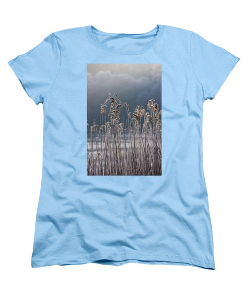 Frozen Reeds At The Shore Of A Lake Women's T-Shirt (Standard Cut) by John Short