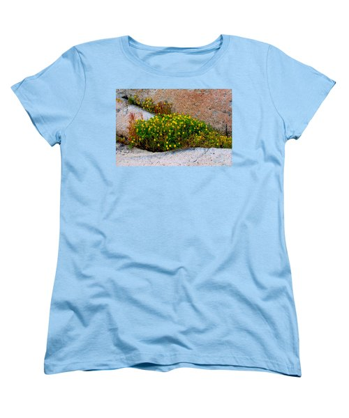 Growing In The Cracks Women's T-Shirt (Standard Cut) by Brent L Ander