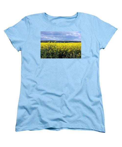 Hay Fever Women's T-Shirt (Standard Cut) by Rdr Creative