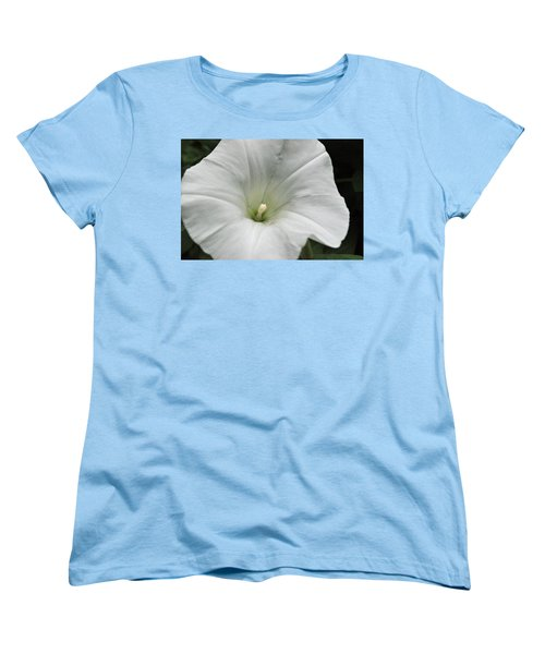 Women's T-Shirt (Standard Cut) featuring the photograph Hedge Morning Glory by Tikvah's Hope