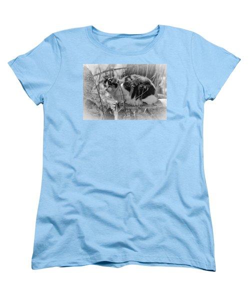 Hiding Women's T-Shirt (Standard Cut) by Eunice Gibb
