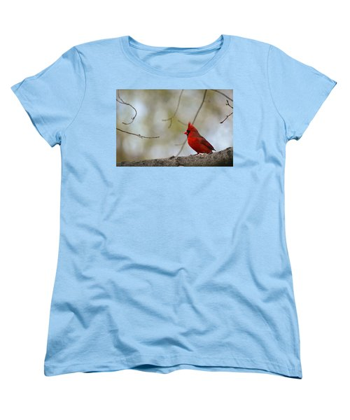 Pop Of Color Women's T-Shirt (Standard Cut) by Lori Tambakis