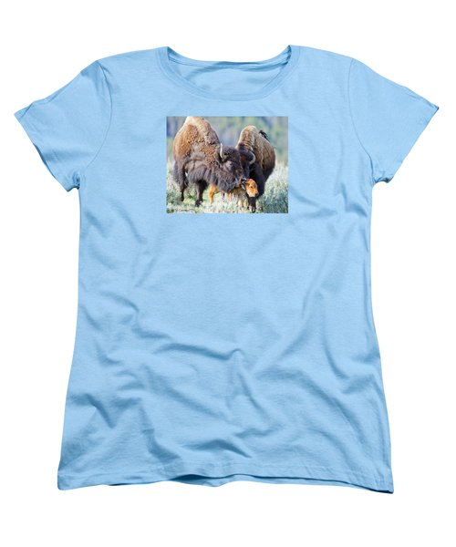 Pride And Joy Women's T-Shirt (Standard Cut) by CR  Courson