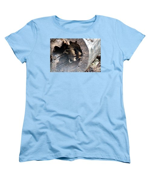 Women's T-Shirt (Standard Cut) featuring the photograph Raccoon In Hiding by Kathy  White