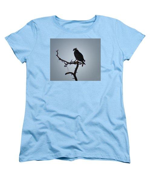 The Osprey Women's T-Shirt (Standard Cut) by Bill Cannon