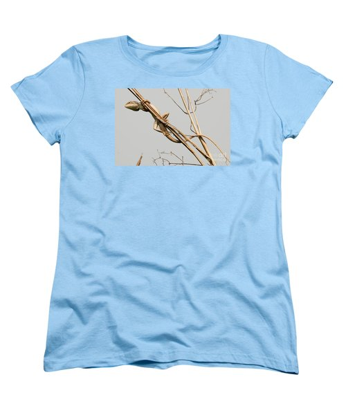 Women's T-Shirt (Standard Cut) featuring the photograph Vantage Point by Fotosas Photography